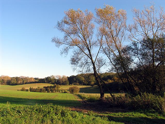 Farmland near Winterbourne