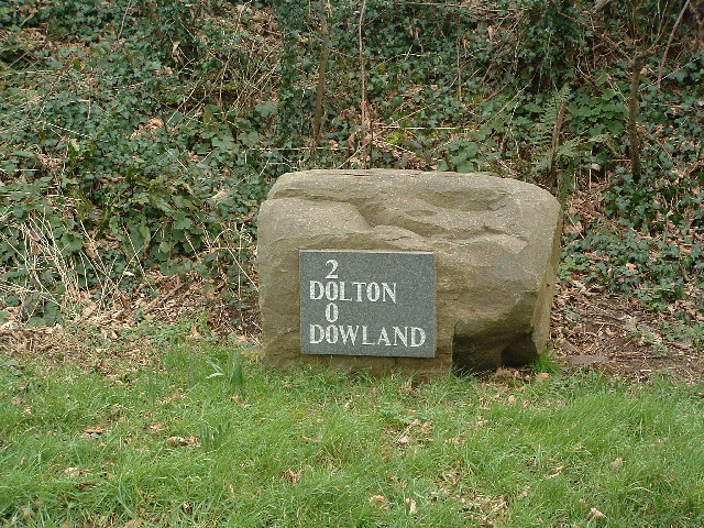 """Millennium"" stone, Dowland"