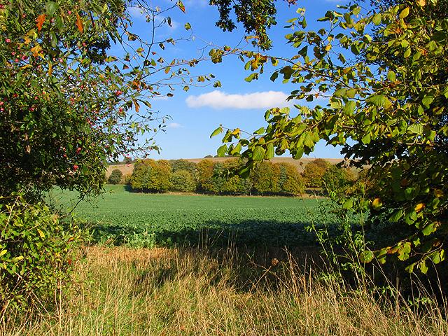 Farmland along the Byway