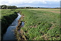 SO8525 : The River Chelt near Wainlode by Philip Halling