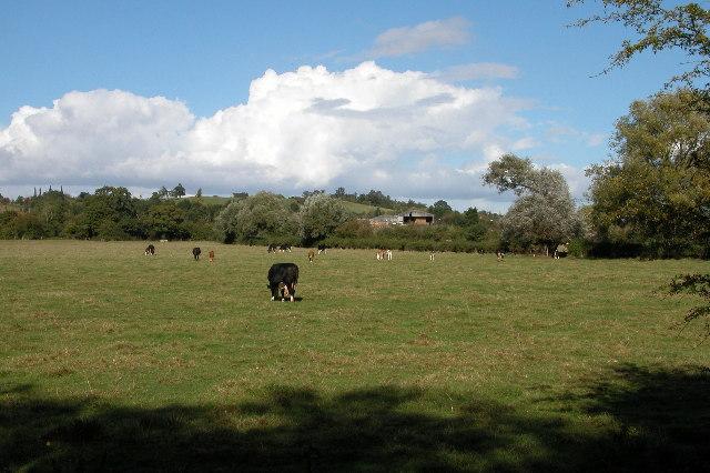 Lower Apperley