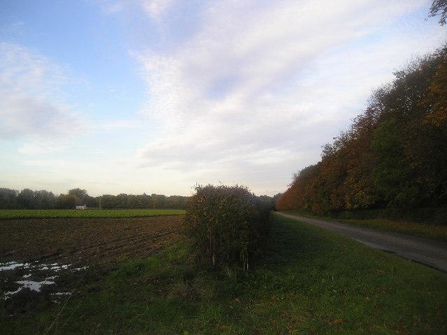 Landwade Road