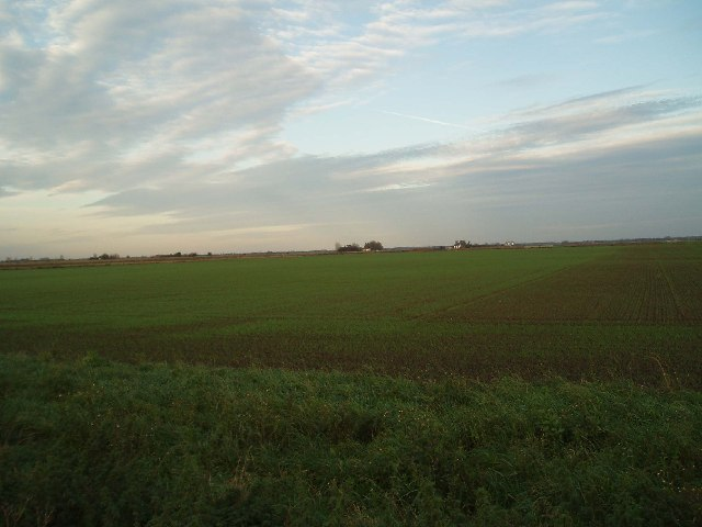 Farmland near Neep's Bridge, Stow Bardolph Fen.