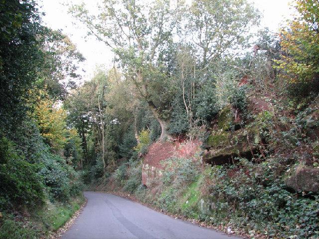 Burrow Hill Rocks