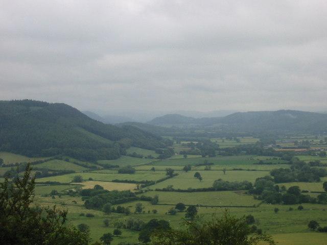 Combe Moor and Byton Moor
