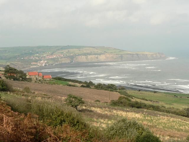 Coastal hillside