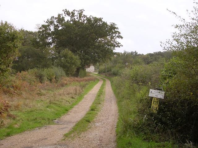 Track to Muttonsnow Farm, Colbury