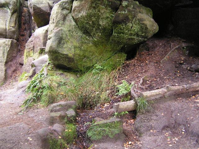Spring, Harrison Rocks