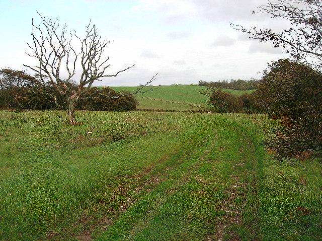 Bronze Age settlement, Plumpton Plain