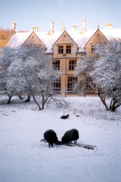 Woodchester Mansion in snow