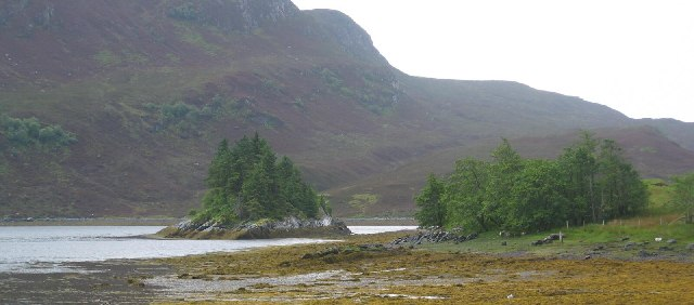 Looking towards A' Ghlas-sgeir, an islet in Loch Long
