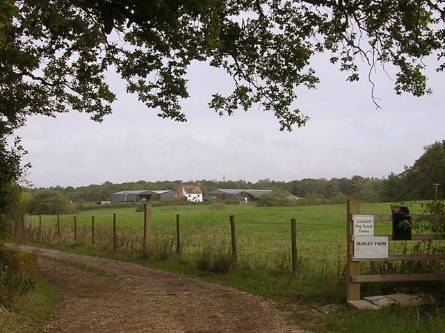Track to Durley Farm, Colbury