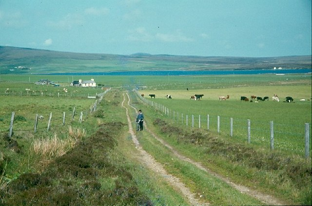 Track near the Loch of Kirbister, Orphir, Orkney