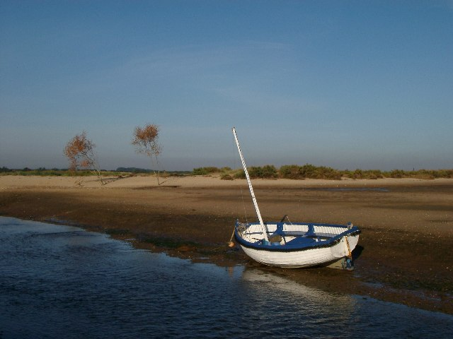 Boat and trees in a saltmarsh