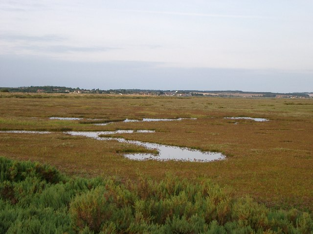 Saltmarsh from Gun Hill