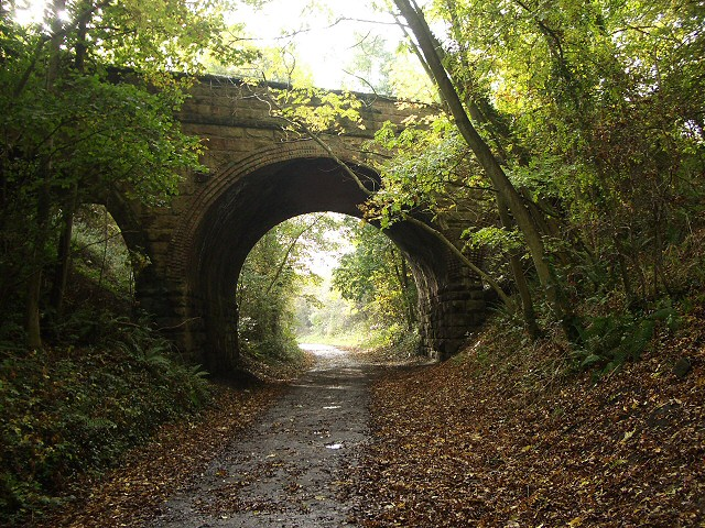 Bridge over disused railway