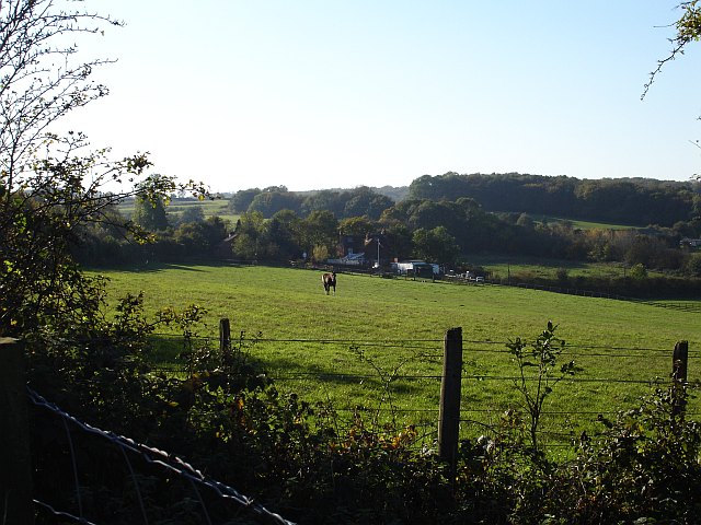 Magpie Farm