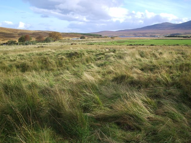 Looking towards Clebrig from Altnaharra