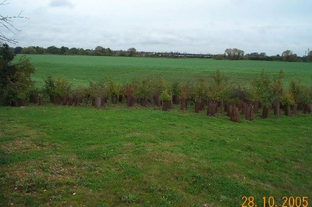 Burnham: West Town Farm
