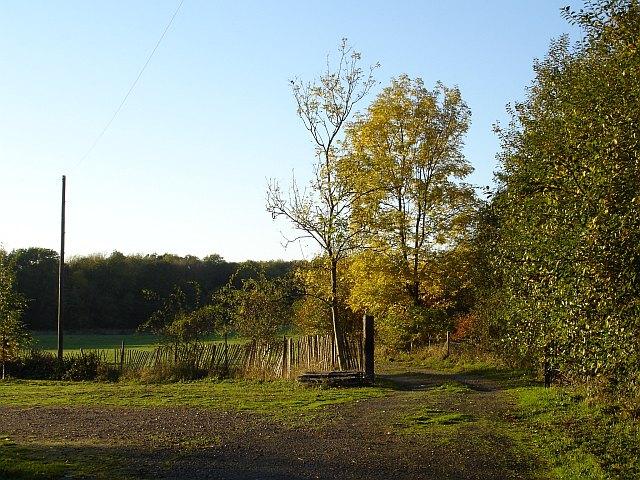 Honey Hill Campsite