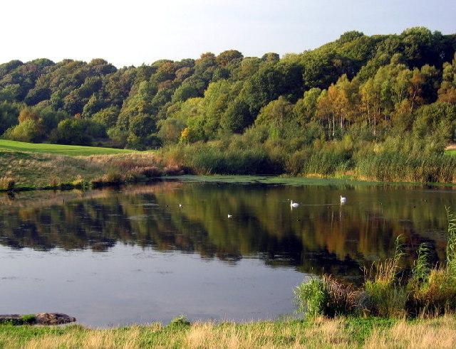 Derwenthaugh Park, Winlaton Mill