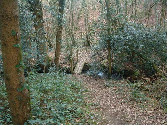 Tarka Trail: Footbridge near Groves Fishleigh