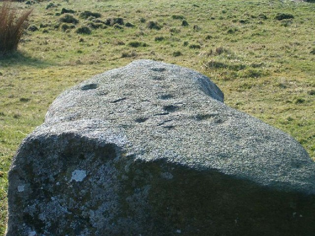 Cup-marked rock at Glasvaar, Mid Argyll