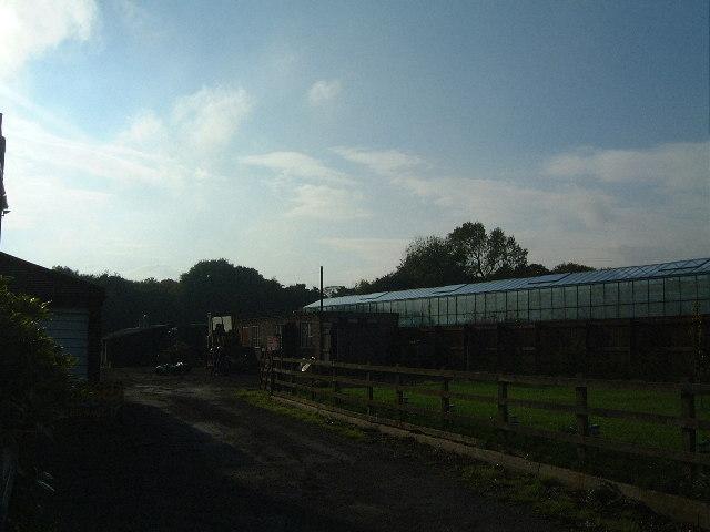 Silverhills Nursery