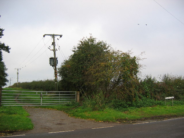 Rectory Lane, Roos
