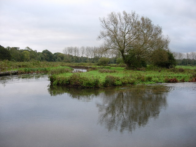 Meander in the Itchen