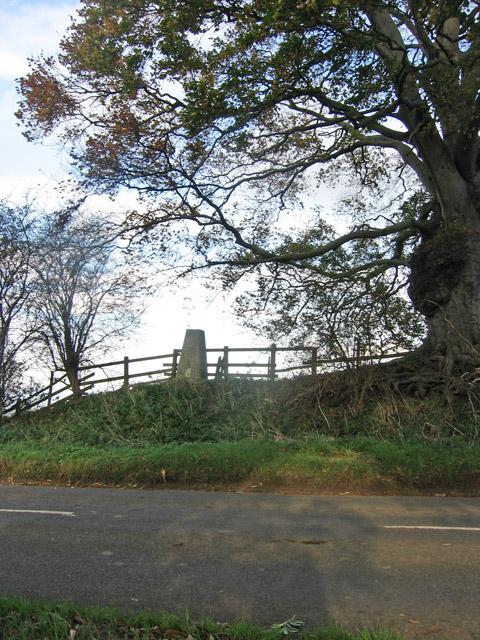 Trig Point, Waltham Lane near Eastwell