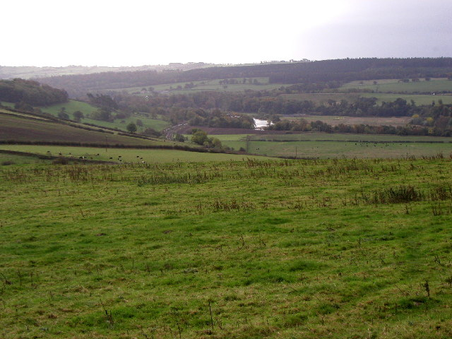 The Tyne Valley
