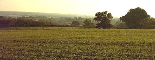Footpath 584 near Orlestone (Hamstreet)