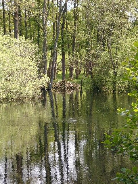 Pond, Laggan Hill