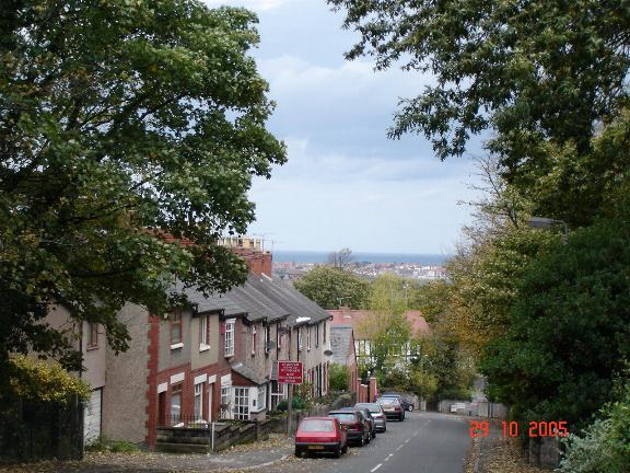 View from Glyn