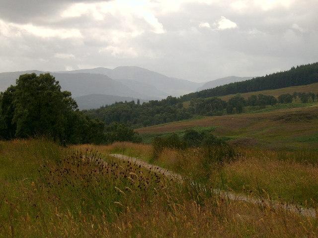 Path behind Craiganour Lodge
