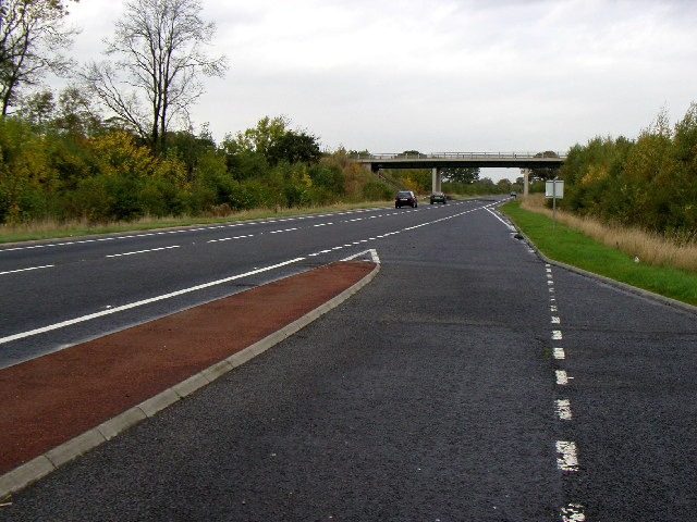 The A19