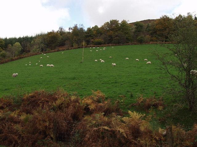 Looks like flushing meadow