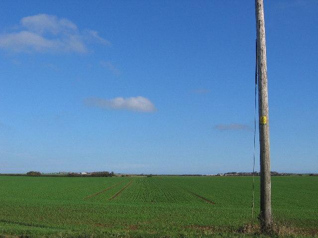 East Coast Farmland
