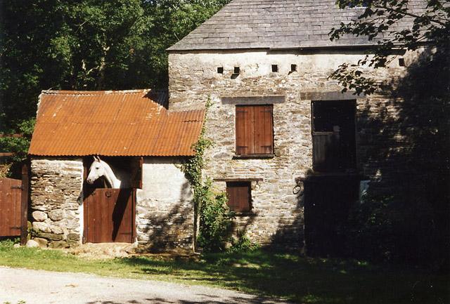 St Neot: Ashford Mill