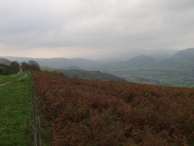 Bridle path above the Afon Dyfrdwy