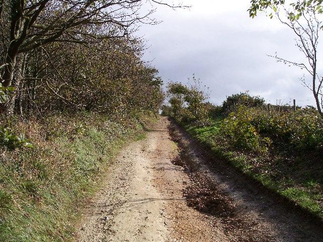 Tennyson Way near Brighstone Down