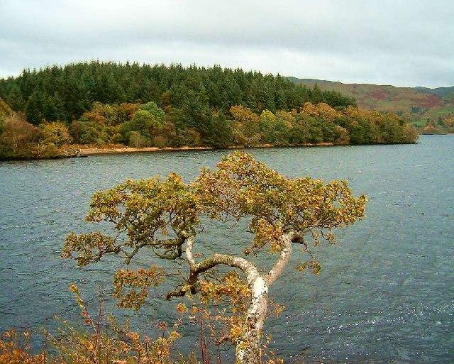 Liever Island on Loch Awe, Argyll