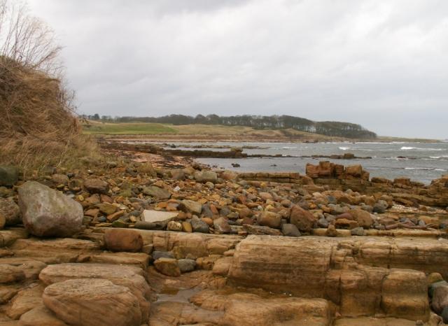 Shoreline by Cambo