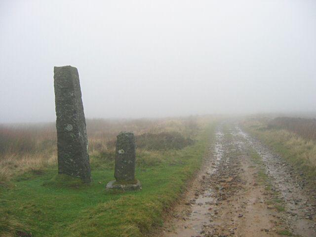 Jenny Bradley Stone on a wet day