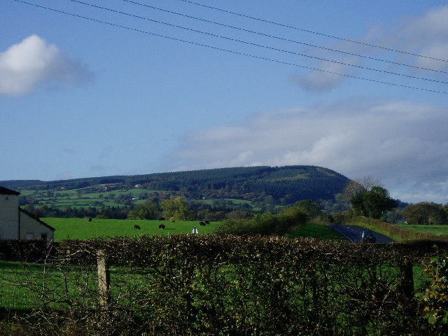 Longridge Fell from Gt Mitton