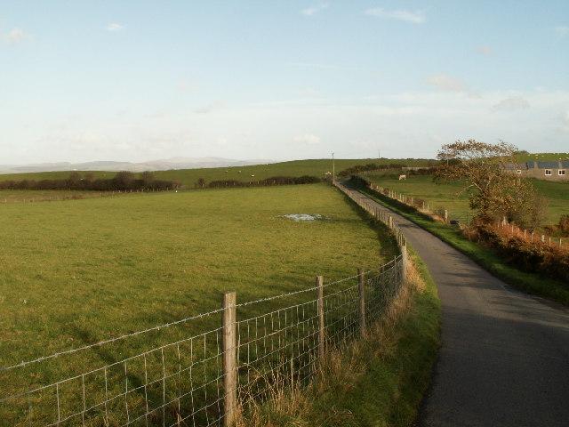 Country road, nr Rhydyfelin