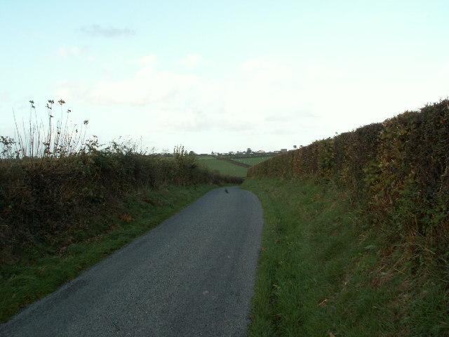 Lane near Pant y crug