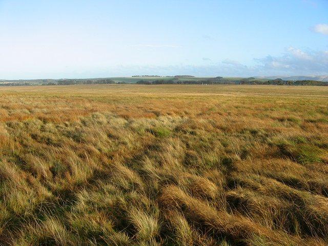 Auchencorth Moss.