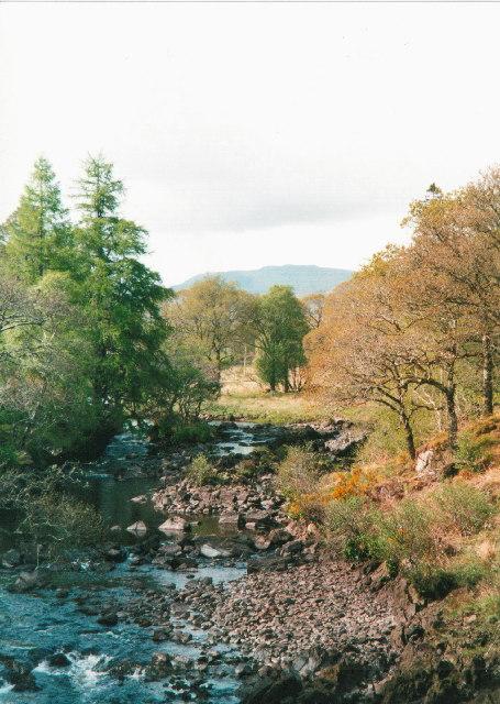 River Aline